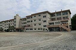 町田市立堺中学...