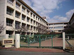 播磨南中学校