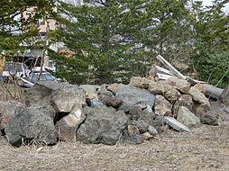 敷地内の庭石