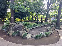 谷津の森公園(...