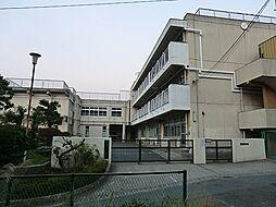 中学校岡津中学...