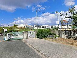 美木多小学校