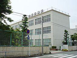 羽田中学校(特...