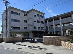 三条小学校
