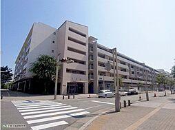 パティオス21番街 中古マンション 〜幕張駅徒歩14分〜