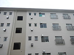 長津田団地5号棟