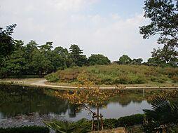 公園緑ケ丘公園...