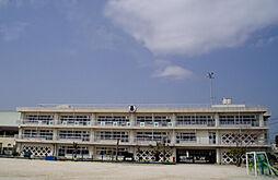 谷津小学校