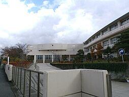藤が岡中学校