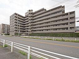 新狭山駅徒歩5分 南西角部屋 メイゾン新狭山