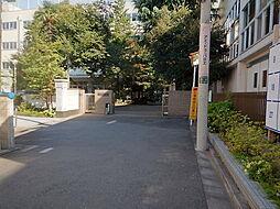 駒本小学校まで...
