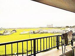 バルコニーからの眺望は緑が広がり気分をリフレッシュできます。