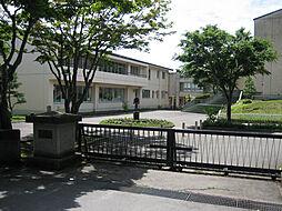 軽井沢中部小学...