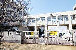 中学校姫路市立...