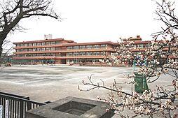 市立藤沢東小学...