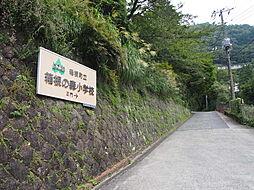 箱根の森小学校...