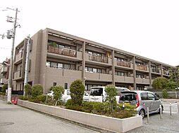兵庫県西宮市大井手町の賃貸マンションの外観