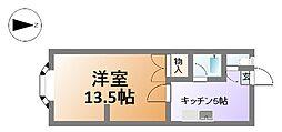 ノアーズアーク北堀江[4階]の間取り