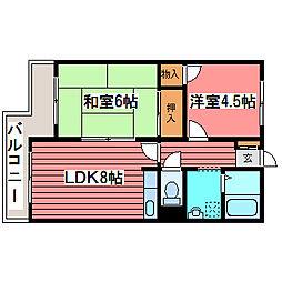 コーポ佐野富月寒東[1階]の間取り