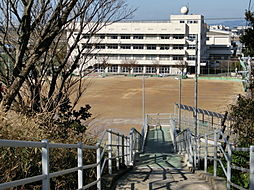 南陽中学校まで...