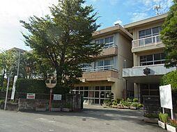 芦子小学校(3...