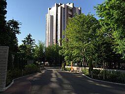札幌市西区八軒一条西2丁目