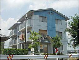滋賀県蒲生郡日野町大字松尾の賃貸マンションの外観