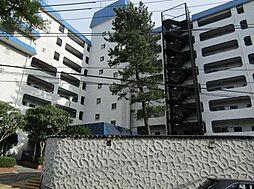 秀和志村城山レジデンス[602号室]の外観
