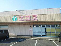 エコス金沢店
