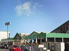 モリスホームセンター…約690m