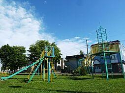 くりのき公園