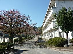 塙山小学校80...
