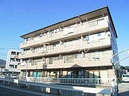 メゾンヤマサキ[1階]の外観