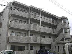 愛知県名古屋市南区芝町の賃貸マンションの外観