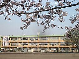 学区:岩井中学...