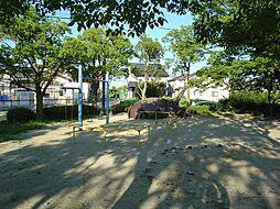 東山公園(カブ...