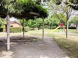 中沢公園(45...