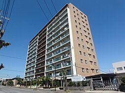 ルネ・アッタ鎌ヶ谷(8階)