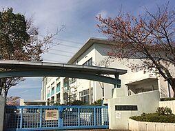 市立緑丘小学校...
