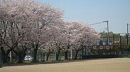 大山口中学校