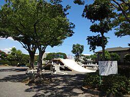 瀬名川公園 5...