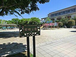 柳崎公園(28...