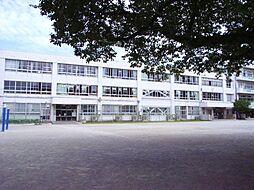 町田南第三小学...