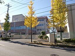 王禅寺中央小学...