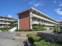 尾西第一中学校