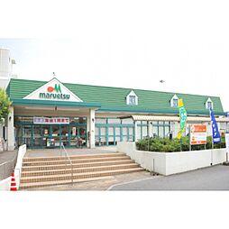 マルエツ矢切駅...