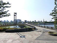 桜橋は毎日のお散歩コースに