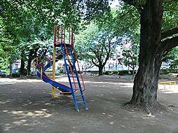 関沢公園 (約...