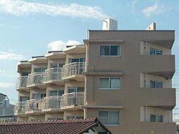 新井ビル[405号室]の外観