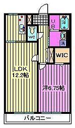 コモド錦町[3階]の間取り